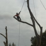 climber10