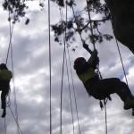 climber6